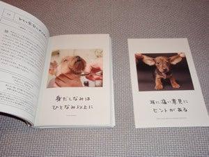 水野敬也オフィシャルブログ「ウケる日記」Powered by Ameba-ワンチャンス10
