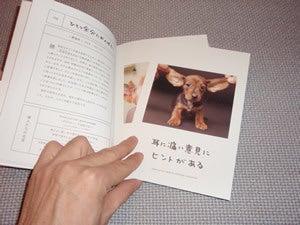 水野敬也オフィシャルブログ「ウケる日記」Powered by Ameba-ワンチャンス9