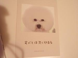水野敬也オフィシャルブログ「ウケる日記」Powered by Ameba-ワンチャンス14