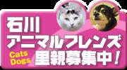 $☆よっちん☆のブログ