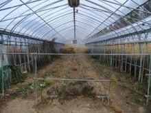 はるうた農園-刈り取り2