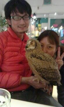 フクロウのみせのブログ-picsay-1355410839.jpg