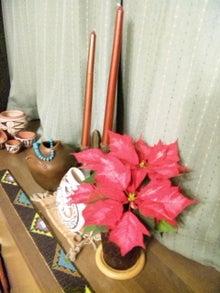 オカメインコのももちゃんと花教室と旅日記-121211_212631.jpg