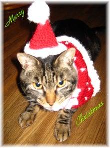 毎日はっぴぃ気分☆-クリスマスカード