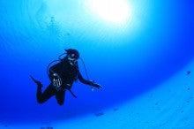 ダイビングスポットツアー動画ブログ!【エルダイブ】名古屋・愛知・三重近郊