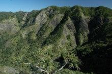 小笠原のエコツアー 小笠原旅行 小笠原観光 小笠原の情報と自然を紹介します-衝立山