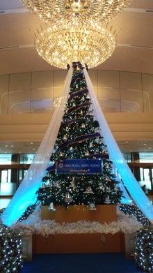まちだぬきの部屋-京王プラザのクリスマスツリー