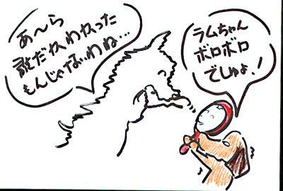 MAYちゃん父さんのブログ-chrismas202