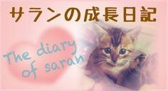 サランの成長日記