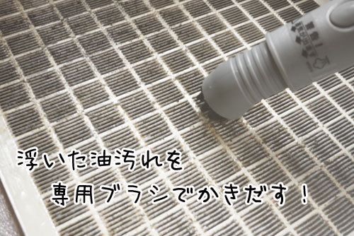『年齢不詳女』への道DX-SSポータブル16.jpg
