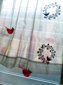 オカメインコのももちゃんと花教室と旅日記-121229_160014.jpg