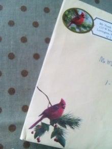 オカメインコのももちゃんと花教室と旅日記-121229_151423.jpg