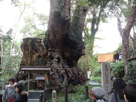 ホテル ミクラスのブログ-来宮神社