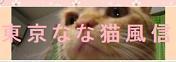 天才なるおさなご達 ~我輩は書生猫である~-なな猫風信様
