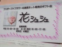 花シュシュのブログ