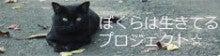 $ぼくらは生きてるプロジェクト☆スタッフのブログ