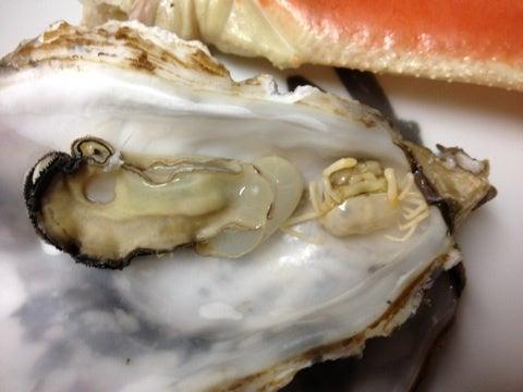 東京 湾 牡蠣