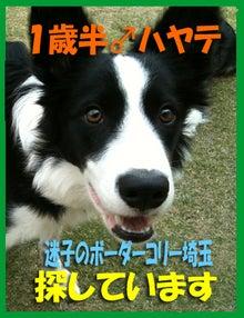 ☆のんルナ仲良し親子withアポロ☆
