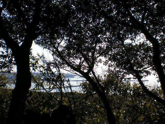 宮崎のゴルフ工房 Perdie1(パーディーワン)のブログ