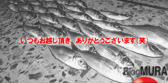 D_Groove Blog/No Fishing No Life.-welcome