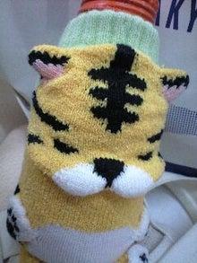 ずれずれブログ…湘南で猫と暮らせば…-130109_1105~0001.jpg