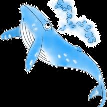 クジラを見に行こう