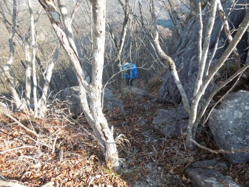 63969212c6 北側(右側)斜面から巻いて下ることになりました。