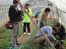 $新鮮野菜収穫体験ツアー-ロケ②