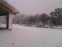羽田寛の徒然草-大雪3