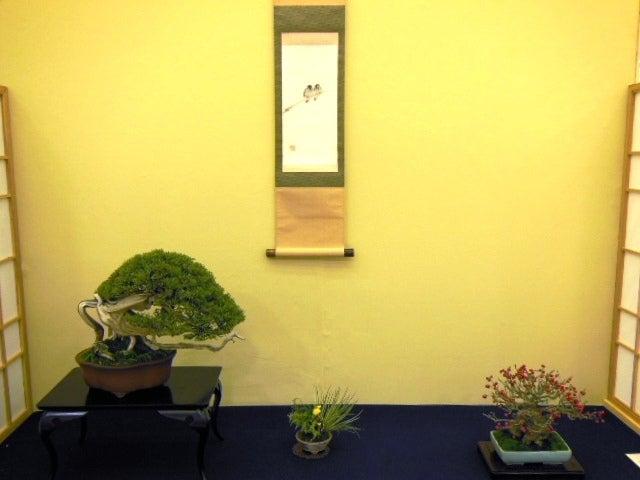 みさきのミニ盆栽遊び
