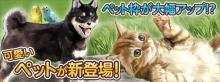 競馬伝説Live!運営チーム公式ブログ 「けいでん!」