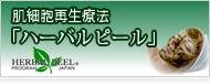 マーノ式魅せる背中メイキング・ハーバルピール・ヨガ・妊婦・エステ@大阪