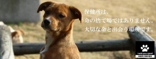 $★桃とあられのdiary★