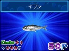 Dr.ミーヤンの下手っぴい釣りブログ-めざせ!! 釣りマスターDS釣果