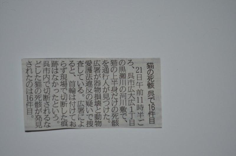 【広島】仔猫大量虐殺事件