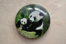 食べて飲んで観て読んだコト+レストラン・カザマ-中国 パンダ