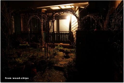バラの庭・アトリエ・小さな雑貨・ウッドチップスのバックヤード【 wood-chips 】裏庭ブログ-町田市のローズガーデン つるバラの庭 バラの冬作業
