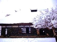 管理人ブログ-雪化粧