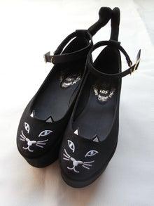 AMO×L.D.S_neko-shoes