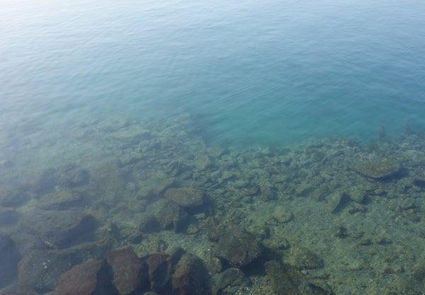 D_Groove Blog/No Fishing No Life.-9