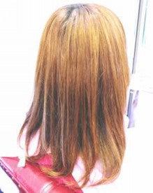 高知県四万十市中村の美容室、ヘアーサロン、パーディションのブログです。 -P1350421.jpg