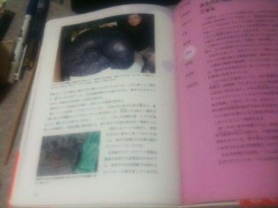 川崎悟司 オフィシャルブログ 古世界の住人 Powered by Ameba-日本の絶滅古生物図鑑・化石採集記