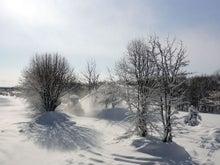 $ムツゴロウ動物王国のブログ-除雪2