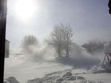 $ムツゴロウ動物王国のブログ-除雪3