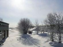 $ムツゴロウ動物王国のブログ-除雪1