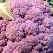 紫ご飯にご満悦♩