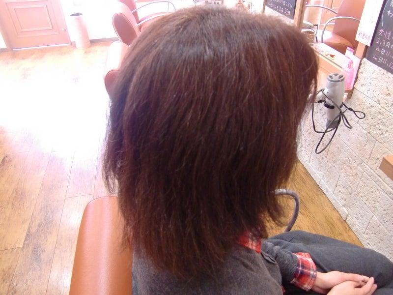 髪質改善が趣味で天然ボケの坂口です。