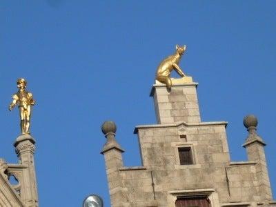金色のネコ