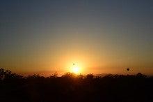 小笠原のエコツアー 小笠原旅行 小笠原観光 小笠原の情報と自然を紹介します-バルーン