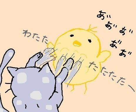 CSOとゆき兎の缶詰ブログ